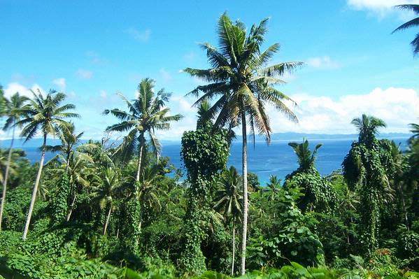40 Acres Freehold, Matei, Taveuni