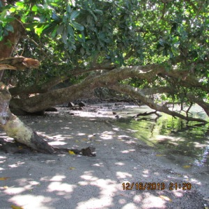 10 Acres Viani Bay 3