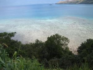 10 Acres Viani Bay 7
