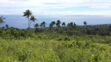 10 Acres Qila, Taveuni 01
