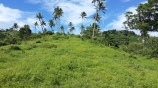 10 Acres Qila, Taveuni 02