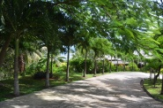 Maravu Paradise Landscaped Grounds