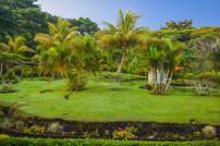 Tagimaucia, Soqulu, Taveuni, Fiji Islands (36)