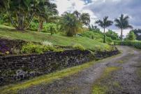 Tagimaucia, Soqulu, Taveuni, Fiji Islands (65)