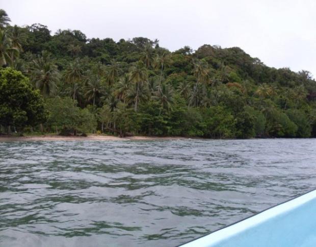 Niubavu Coastline 4