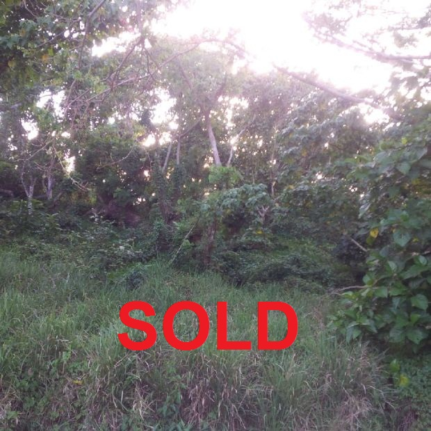 Properties For Sale In Savusavu Fiji