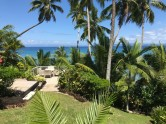 Taveuni Palms3