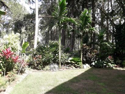 gardens back